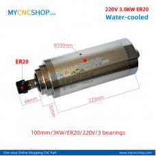 CNC spindle CHANGSHENG DIA.100mm 3.0KW er20 220v 3bearing For Engraving Milling
